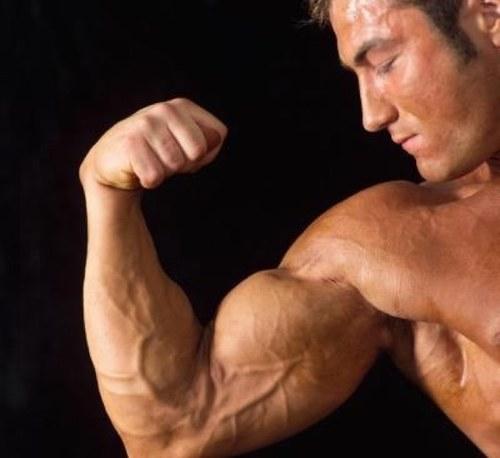 El Óxido Nítrico y su función para ganar masa muscular