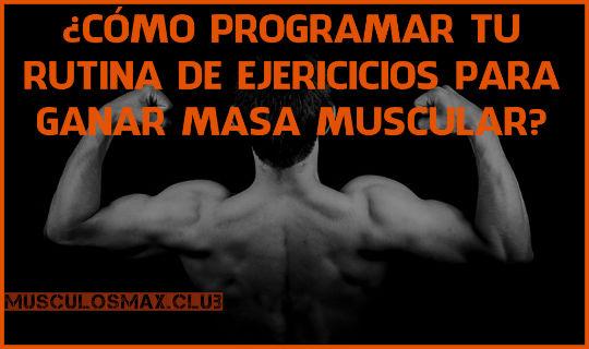 ¿Cómo Diseñar tu rutina de ejercicios para Ganar Masa Muscular?