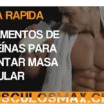 Guía de Suplementos de Proteínas para Aumentar Masa Muscular