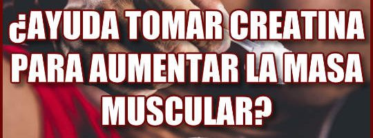 ayuda tomar creatina para aumentar la masa muscular