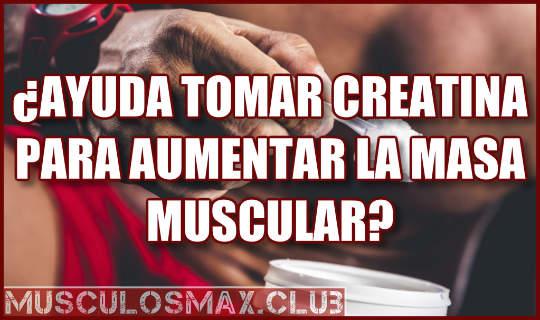 ¿Ayuda tomar Creatina para aumentar la masa muscular? ✅