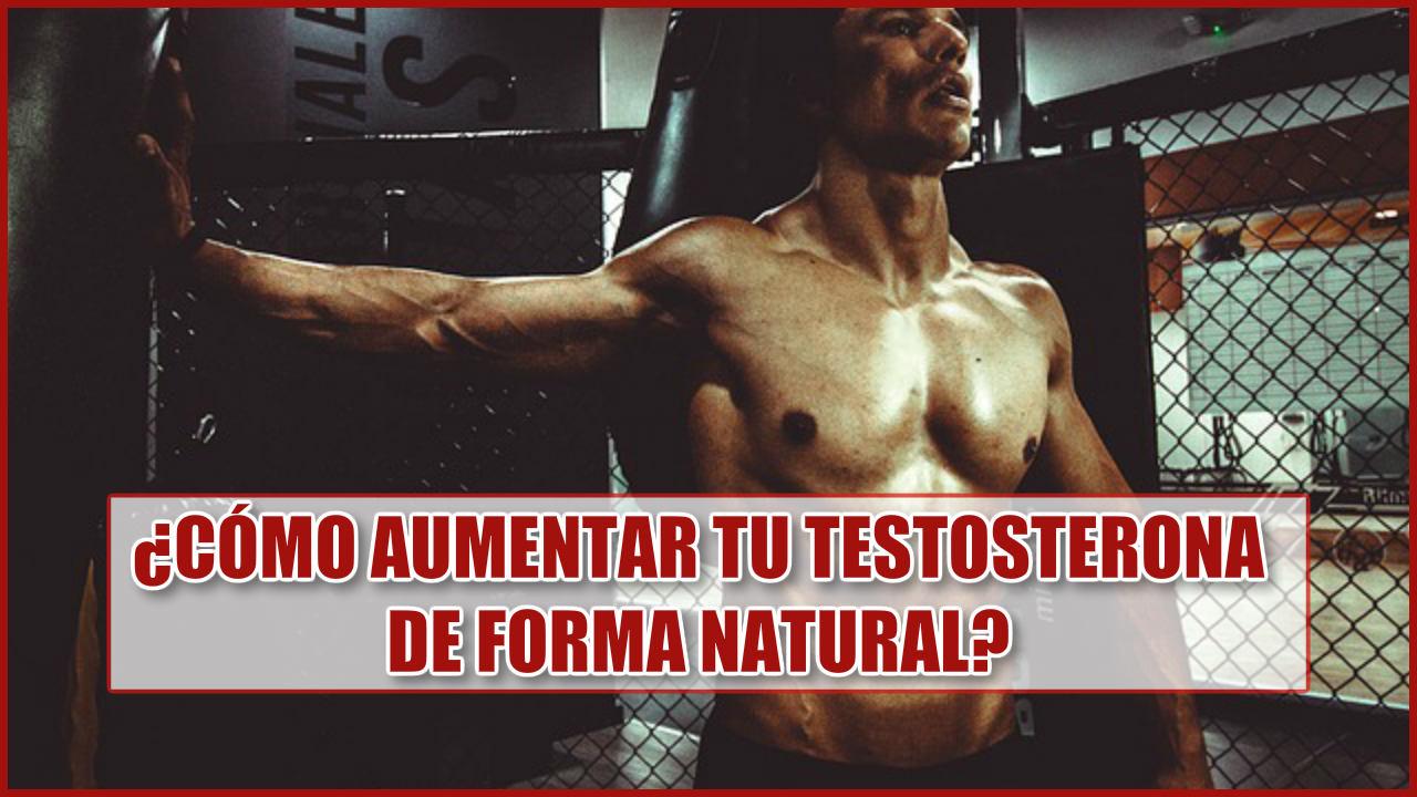 ¿Cómo aumentar la testosterona de forma natural?