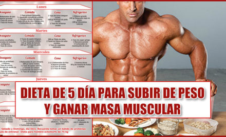 Musculo hacer dieta para