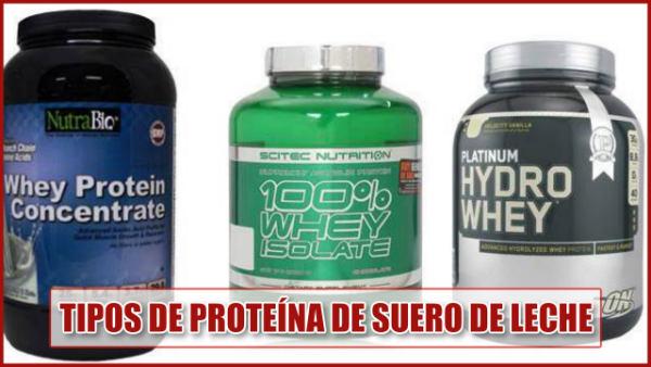 Tipos de proteína de suero de leche