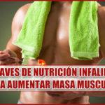 5 claves de nutrición para aumentar masa muscular