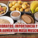 Carbohidratos: Importancia y claves para aumentar masa muscular
