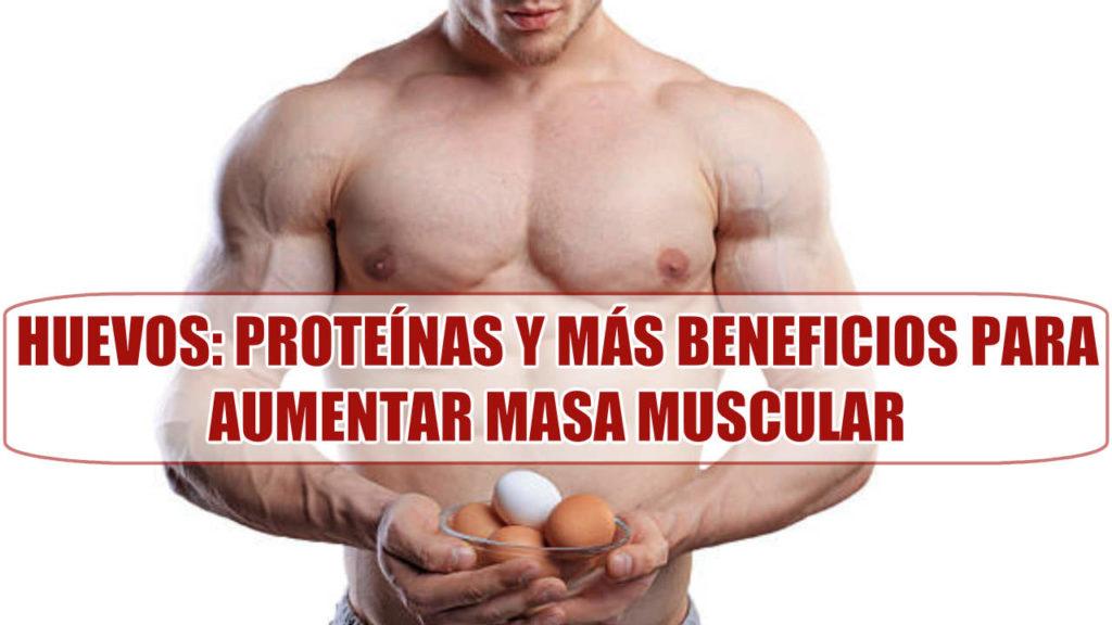 Huevos alimento con proteínas y muchos beneficios para aumentar masa muscular