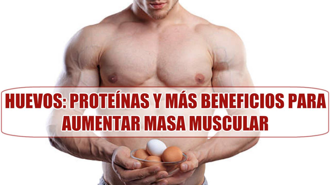 ¿Por qué comer Huevos para Ganar Masa Muscular? Proteínas y otros beneficios