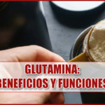L-Glutamina: Beneficios y funciones ¿Sirve para ganar masa muscular?