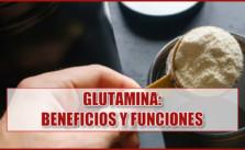 L-Glutamina: beneficios y funciones