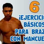 6 Ejercicios básicos para hacer Bíceps con Mancuernas en Casa