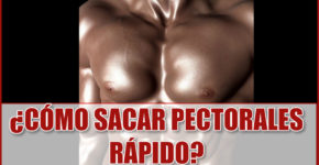 ¿Cómo Sacar Pectorales Rápido?